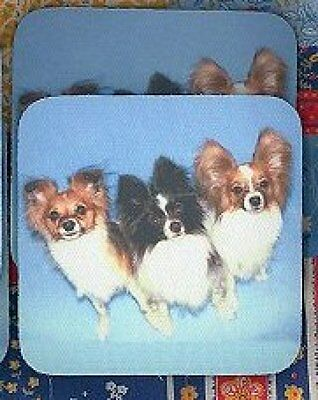 PAPILLON Rubber Backed Coasters #0527