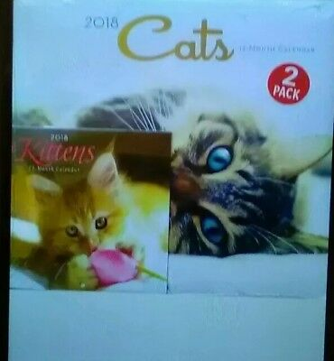 2018 12 Month 2 Pack Calendar Set Cats and Kittens Monthly Page Format