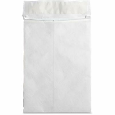 "Business Source Tyvek Envelopes Open-End Plain 10""x13""x1-1/2"" 100/CT WE 42201"