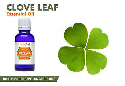Clove Leaf Essential Oil 100% Pure Natural PREMIUM Therapeutic Grade Oils