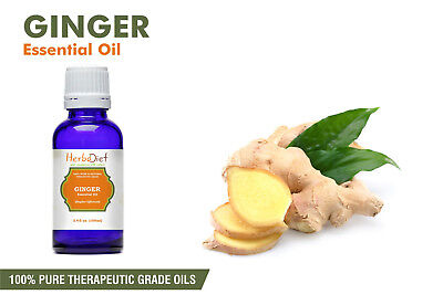 Ginger Essential Oil 100% Pure Natural PREMIUM Therapeutic Grade Oils