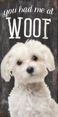 Maltese Sign – You Had me at WOOF 5×10
