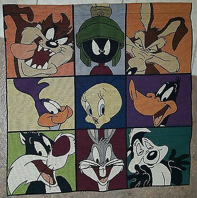 "Looney Tunes Warner Brothers Tapestry Wall Hanging With Rod Pocket 27"" X 27"""