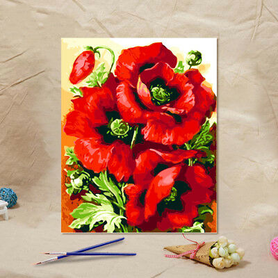 Creative Funny Canvas Paint By Numbers Kit Oil Painting DIY Red Flower No Frame