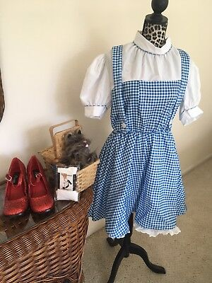 Dorothy Dress Size L Red Ruby Slippers size 10 And Toto Too - Wizard Of Oz