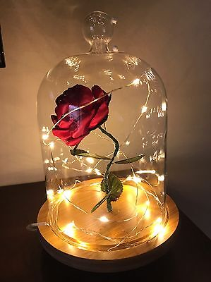 Beauty And The Beast Enchanted Rose. Rose In Dome. Bell Jar, Cloche With Rose.