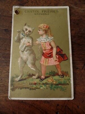 Carte Litho Ancienne Pub Chatin Freres Grenoble Fille Chat Cavalier, Cat Litho