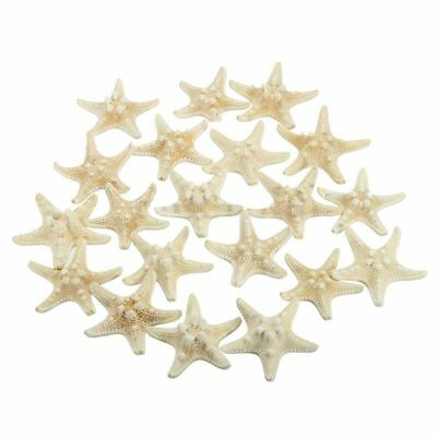 5X(20pcs White Bleached Knobby Starfish Wedding Display Seashell Craft Decor M3O