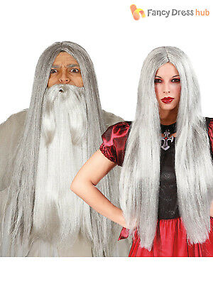Long Straight Grey Witch Wizard Wig Ladies Mens Halloween Fancy Dress Costume