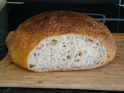 Authentic Sourdough Bread Starter from San Francisco (dry form), discounted