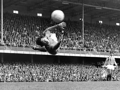 *stunning Photo* Stoke City 1966 Gordon Banks (Sc-038)