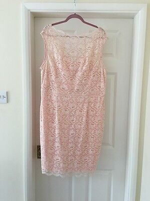 Wallis Pink And Cream Lace Dress / Mother Of The Bride Wedding Size 20