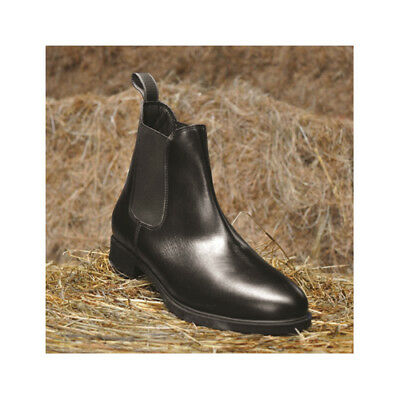 Mark Todd Toddy Leather Kids/Junior Jodhpur/Paddock Short Horse Riding Boots