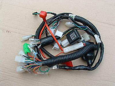 Braap 250 2015 Mod Electrical Harness Good Cond