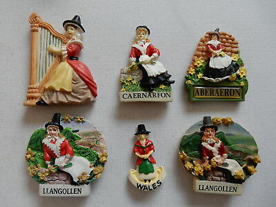 One Selected 3D Souvenir Fridge Magnet from Wales Welsh Woman