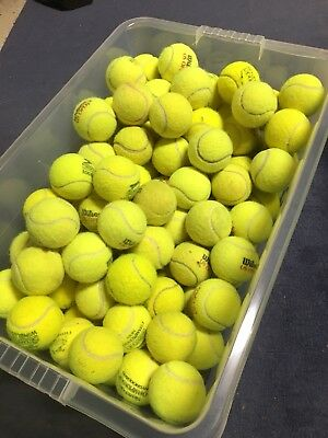 15 Used Tennis Balls- Ideal for Dog Toys/Chews/Cricket