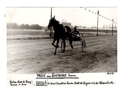 Original Press Photo Harness Trotting Racing Szello Andreas Von Beess 18.3.62 1