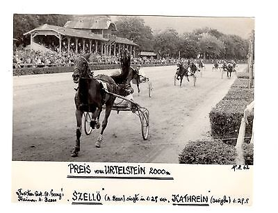 Original Press Photo Harness Trotting Racing Szello Andreas Von Beess 15.8.62 1