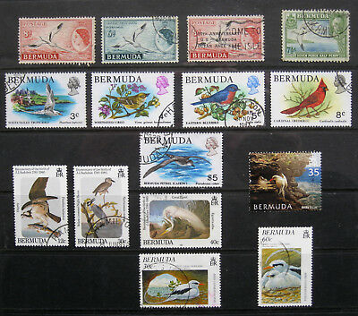 BERMUDA Bird Stamp selection. Mostly used