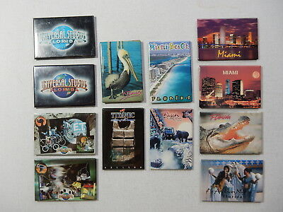 One Selected Souvenir Fridge Magnet from Florida USA