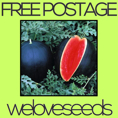LOCAL AUSSIE STOCK - Sugar Baby Black Watermelon, Fruit Seeds ~10x FREE SHIPPING