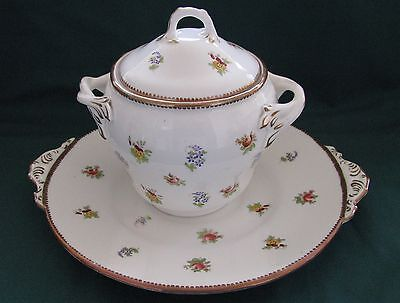 Continental Floral Decorated Biscuit Barrel and Under Plate
