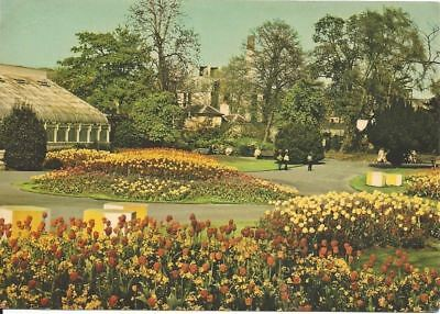"Vintage collectible 4"" x 5.75"" Botanical Gardens Ireland 1978 posted"