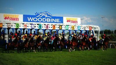 Buffet Dinner for 4 People at Woodbine Racetrack or Mohawk Racetrack in Ontario