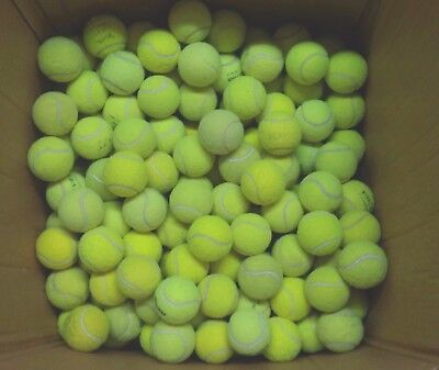 50 Used Tennis Balls For Dogs - Dog Ball / Toy. All Machine Washed