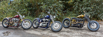 Sledhead Harley Davidson Bobber Chopper ready to ride,complete package,warranty