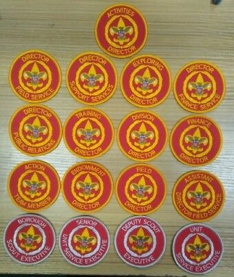 BSA professional position patches scout badges - council issues