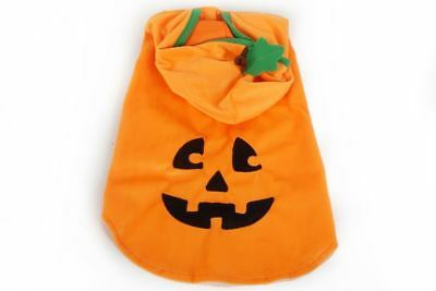 Halloween Pumpkin Pet Outfit with Hood Available in 4 Sizes Sold Individually