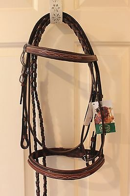 NEW Beval Conquer Padded Fancy Raised Bridle - Brown - Cob