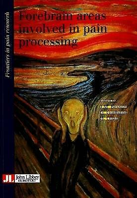 Forebrain Areas Involved in Pain Processing by G. Guilbaud, J.M. Besson...