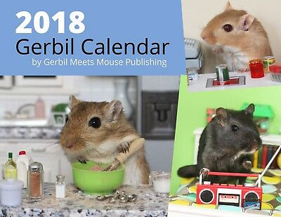 2018 Gerbil Calendar by Gerbil Meets Mouse Publishing Pets Rodents Hamster Photo