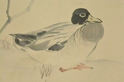 Hanging Scroll Japanese Painting Duck Asian Art Japan Antique Picture 景文 松村 b023