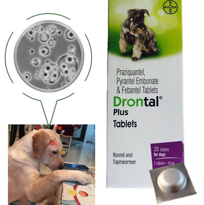 Bayer Drontal New Plus For Dogs Pups Dewormer (4 Tablets) USA Seller Ship Fast