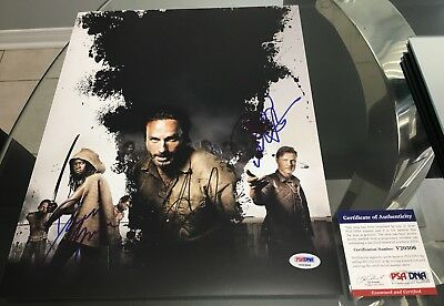The Walking Dead Signed 11x14 Andrew Lincoln/Danai Gurira/Davd Morrissey PSA/DNA