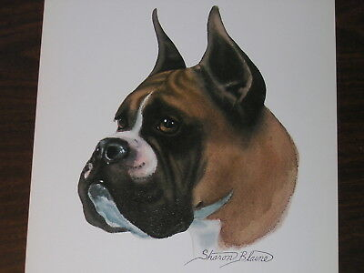 BOXER DOG 11X14 ORIGINAL PRINT SHARON BLAINE 1950s MINT