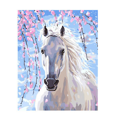 50x40cm DIY Painting By Numbers Canvas Frameless Oil Painting White Horse#21