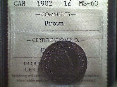 1902 Canada Large Cent ICCS MS-60 Brown