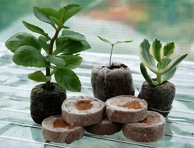 Jiffy Coir Pellets Round 50mmx100pcs - great for Propagation Cuttings & Seedling
