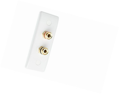 Slimline 2 Post Surround Sound Speaker Wall Plate with Gold Binding Posts