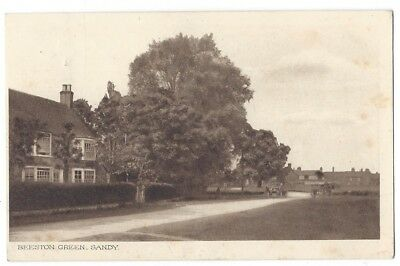 BEESTON GREEN Sandy, Bedfordshire, Old Postcard by Mead Postally Used 1915
