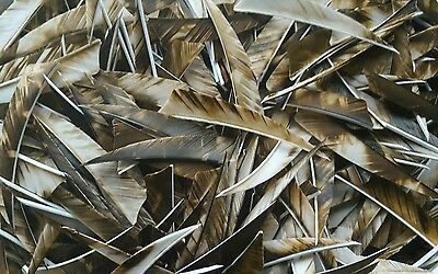 "36 x 4"" Shield Camo BROWN Feathers for traditional arrows / longbow / archery"