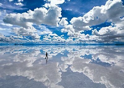 3000 Piece Jigsaw Puzzle Ultimate Master Of Uyuni Salt Lake - Bolivia Small Piec