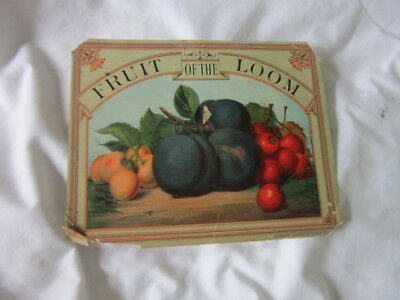 Circa 1890 Antique Fruit of the Loom Underwear Advertising Sign