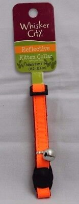Gloss Reflective Kitten Collar with safety Snap Away Safety Buckle Orange