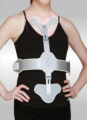 Ash Hyper Extension Brace,Support and Erection of the Lumber Spine FREE SHIPPING
