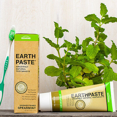 SALE! Out of Date - EARTHPASTE Spearmint Flavour 100% Natural Toothpaste [113g]